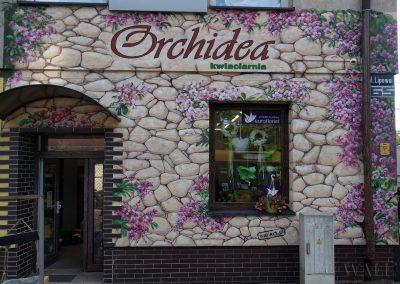 pomalowana ściana elewacja - kwiaciarnia Orchidea Gliwice