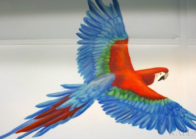 malowidło ścienne w sali zabaw - papuga