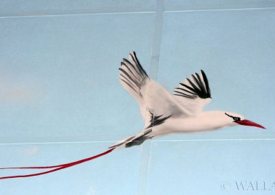 malowidło ścienne -  namalowany ptak