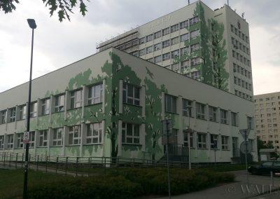 mural - namalowane drzewa - Uniwersytet Rolniczy wydział Leśny w Krakowie